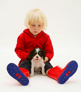 Young blonde haired girl, sitting with King Charles Spaniel puppy and welly boots. Model released  -  Jane Burton