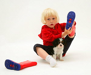 Young blonde haired girl, sitting with King Charles Spaniel puppy and taking off welly boots. Model released  -  Jane Burton