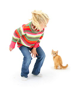 Yonng girl with blonde hair leaping about and scaring a ginger kitten. Model released  -  Mark Taylor