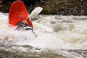 A kayaker plays in a hole in Tariffville Gorge on the Farmington River in Tariffville, Connecticut. Class III whitewater. May 2007. Model released.  -  Jerry Monkman