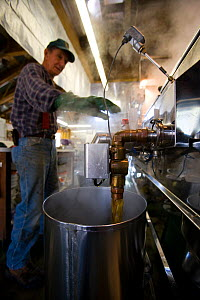 Man making syrup in his sugar house at the Sunday Mountain Maple Farm, Orford, New Hampshire, USA. March 2007  -  Jerry Monkman