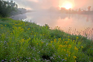 Early morning mist rising from the Connecticut River in Lunenburg, Vermont, USA, August 2007 - Jerry Monkman