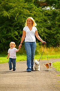 Woman walking along path with her daughter and a Chihuahua and a Mixed Breed Dog, puppy on leads - Petra Wegner