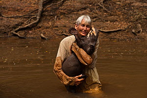 Diane McTurk carrying a Giant otter (Pteronura brasiliensis) into the river, habituated, Karanambu Otter Trust for re-introduction, Rupununi, Guyana, Endangered species, August 2009  -  Pete Oxford