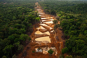 Aerial view of Alluvial Gold Mine in the rainforest, Guyana, December 2009 - Pete Oxford