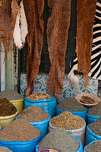 Spices and snake skins for sale in the Medicine and Fetish Market,  Djemaa el-Fna (the square), Marrakech, Morocco, June 2009 - Pete Oxford