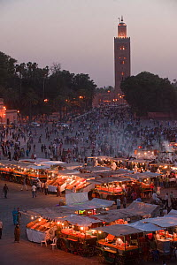 Food stalls in the market at night with Koutoubia Mosque in the background, Djemaa el-Fna (the square), Marrakech, Morocco, June 2009  -  Pete Oxford
