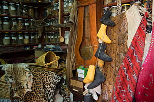 Animal skins and traditional medicines for sale in market stall in the medina, Fes, Morocco, June 2009 - Pete Oxford
