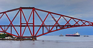 Oil tanker sailing under the Forth Railway Bridge / Forth Rail Bridge, Firth of Forth, near Edinburgh, Scotland, UK, June 2010  -  Philippe Clement