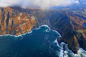 Aerial view of cliffs at Bunglass bay, Slieve League, west of Kilcar and Killybegs, County Donegal, Republic of Ireland, January 2009  -  Robert Thompson