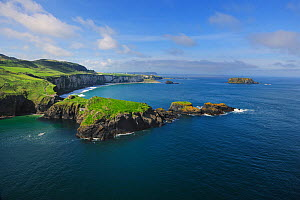 Aerial view of Carrickarade Island, County Antrim, Northern Ireland, UK, September 2009  -  Robert Thompson