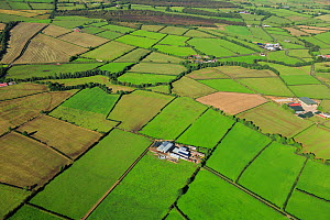 Aerial view of patchwork effect of farmland at Bonnanaboigh, south of Limavady, County Londonderry, Northern Ireland, UK, September 2009  -  Robert Thompson