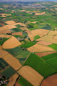Aerial view of agricultural farmland, south of Newtownards, County Down, Northern Ireland, UK, September 2009 - Robert Thompson