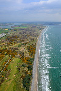 Aerial view of beach, golf course and sand dune system, Murlough NNR, County Down, Northern Ireland, UK, May 2008 - Robert Thompson