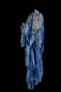 Kyanite crystals (Al2SiO5 / Aluminum silicate) from Brazil, used in making spark plugs, bricks and porcelain  -  John Cancalosi