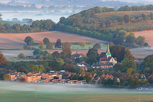 Dawn mist on the fields around the village of South Harting. South Downs, Sussex, UK, September 2009.  -  Peter Lewis