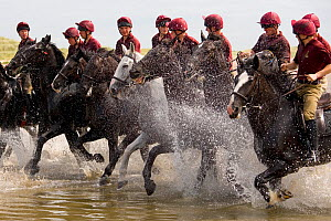 Household Cavalry exercising their horses on Holkham Beach, Norfolk, UK, July 2008  -  Ernie Janes