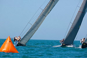 Yachts approaching mark during a race in Key West Race Week. Florida, USA, January 2011.  -  Billy Black