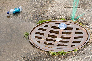 Drain hole cover - Visuals Unlimited