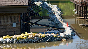 A failed sandbag levee surrounds a building in Coralville, Iowa during the historic 2008 flood on the Iowa River, USA, June 2008  -  Visuals Unlimited