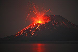 Nighttime Anak Krakatau Volcano explosive or strombolian eruption viewed from Rakata island, Indonesia. Anak means Child of and is a new cone formed in the space left behind after the famous 1883 erup...  -  Visuals Unlimited
