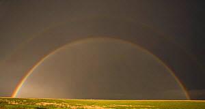 Rainbow in the Texas Panhandle, USA. Note the faint second rainbow above. January 2009 - Visuals Unlimited