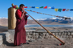 Buddhist monk playing the Lawah (long trumpet) during afternoon pudja, Tso Kar, Ladakh, India, June 2010 - Bernard Castelein