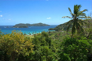 """View of Little Tobago Island. Picture taken during filming for BBC """"Life"""" TV Series, March 2008  -  Barrie Britton"""