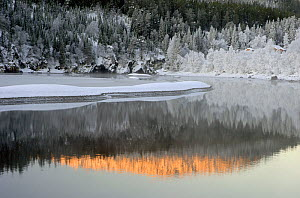 Winter landscape with Nidelva river, Kl�bu, Sor-Trondelag, Norway, December 2005  -  Orsolya Haarberg
