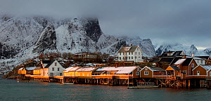 Fishing village of Sakrisoy, Moskenes, Lofoten, Nordland, Norway.  -  Orsolya  Haarberg