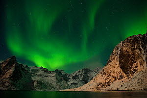 The Northern lights (Aurora borealis) viewed from Moskenes, Lofoten, Nordland, Norway, March 2006. - Orsolya Haarberg,Orsolya  Haarbe
