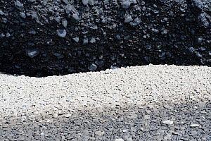 Stones covered with volcanic ash at Dyrholaey, after the eruption of the Eyjafjallajokull volcano, Iceland, April 2010  -  Orsolya Haarberg