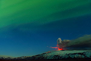 Ash plume and lava eruption from the Eyjafjallajokull volcano at night, with the Northern lights visible in the sky above, Iceland, April 2010  -  Orsolya Haarberg