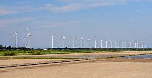 Windfarm with twenty-five wind turbines in a row, near ploughed rice paddies, Port St. Louis, Rhone delta, France, May 2010  -  Nick Upton