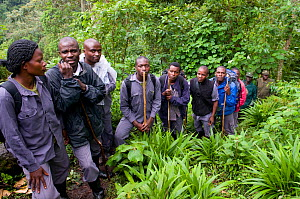 Porters who accompany gorilla-watching tourists,~Bwindi Impenetrable Forest, Uganda, October 2008 - Mark Carwardine