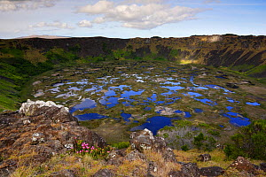 Lagoon at the crater of Rano Kau Volcano, Easter Island (Pascua / Rapa Nui), Unesco World Heritage Site, November 2004  -  Oriol Alamany
