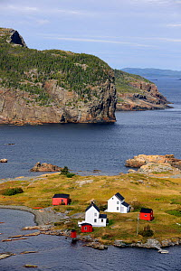 Aerial view of Burden's Point, Salvage village, east coast of Newfoundland, Canada, September 2010  -  Eric Baccega