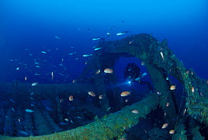 """The front deck of wrecked crude oil super-tanker """"Amoco Milford Haven"""", so long that many divers use underwater scooters to explore. The tanker sank on April 14th, 1991, after three days of fire. Geno...  -  Roberto Rinaldi"""