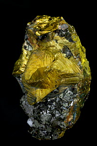 Chalcopyrite (CuFeS2) with Sphalerite (ZnS). Chalcopyrite (yellow) is the main ore of copper, Sphalerite the main ore of Zinc. Anticona Mine, Morococha District, Yauli Province, Junin Department, Peru  -  John Cancalosi