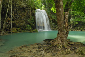 Seven Step Waterfall in the monsoon forest of Erawan National Park, Thailand  -  Visuals Unlimited
