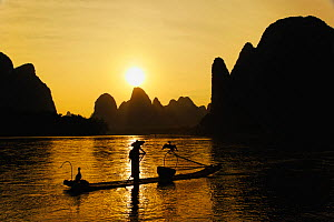 Traditional Chinese fisherman with Cormorants and karst formations in the background along Li River at twilight, near Guilin, China  -  Visuals Unlimited