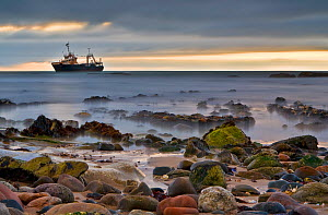 Shipwreck off the coast of Namibia  -  Visuals Unlimited