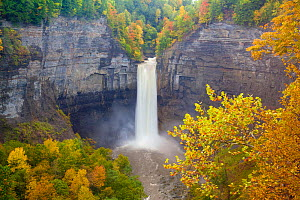 Taughannock Falls, near Ithaca, New York, in autumn after a day of heavy rainfall. October 2010. At 215 feet, Taughannock Falls is 33 feet taller than Niagara Falls. - Marie Read