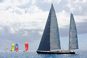 """Sojana"" during the Windward Leeward Race on day two of the Heineken Regatta, St Martin, Caribbean, March 2011.  -  Rick Tomlinson"