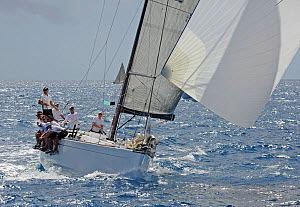 Crew hiking out on board yacht during the Windward Leeward Race on day two of the Heineken Regatta, St Martin, Caribbean, March 2011.  -  Rick Tomlinson