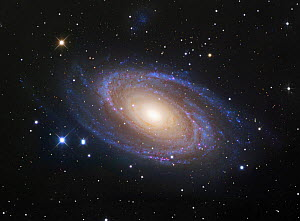 M81 Spiral Galaxy in Ursa Major  -  Visuals Unlimited