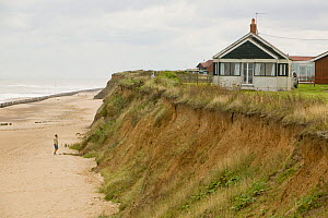 A person on the sandy beach inspecting the coastal cliff erosion near Happisburgh, Norfolk, UK August 2006 - Visuals Unlimited