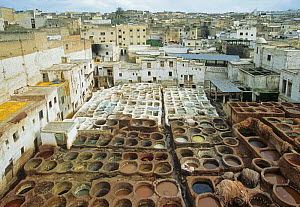 Leather tanneries, Fes, Morocco, North Africa  -  Visuals Unlimited