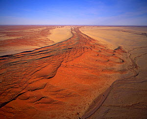 Linear sand dunes in the Namib Naukluft National Park, Namibia, SW Africa  -  Visuals Unlimited