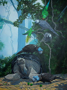 Illustration of Mauritius dawn showing extinct species. A Mauritius giant tortoise (Cylindraspis inepta) - extinct c 1730 - awaits the warmth of the morning sun,while the Thirioux's grey parrot (Psitt...  -  Julian Hume